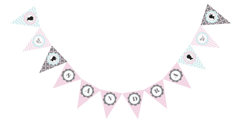 Gender Reveal Party Pennant Banner wedding favors