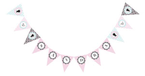 Gender Reveal Party Pennant Banner cheap favors