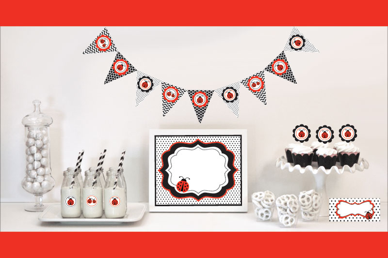 Ladybug Decorations Starter Kit wedding favors
