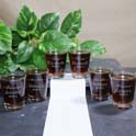 Personalized Wedding Shot Glass cheap favors